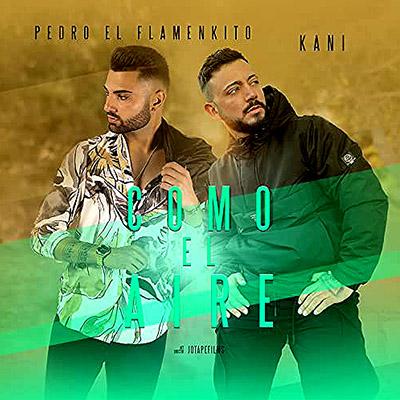 BAR Pedro el Flamenkito y Kani - Como El Aire 400x400